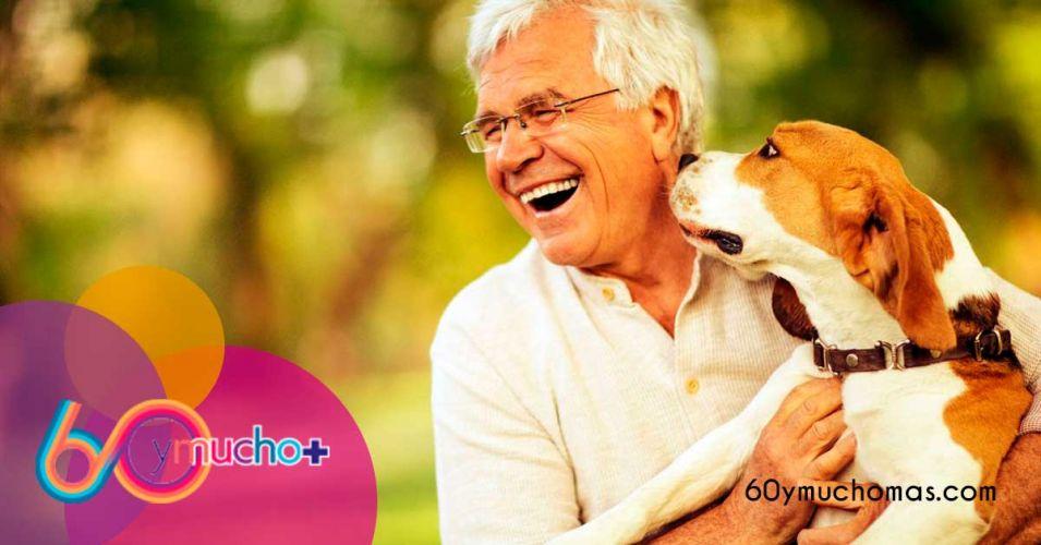 Mejores-razas-perros-personas-mayores-60-y-mucho+-1200x628
