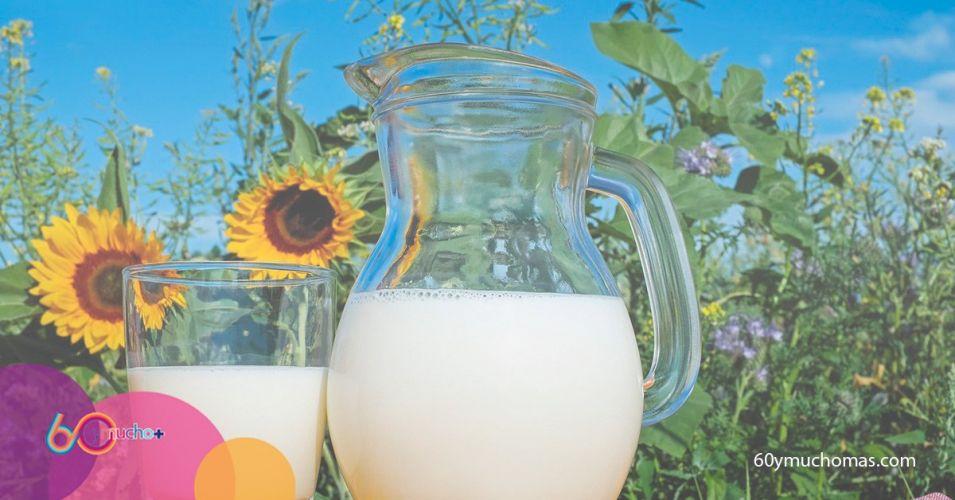¿Beber leche es bueno o malo? La ciencia responde