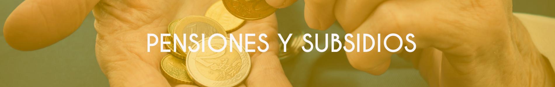 banner-pensiones-subsidios1900x300